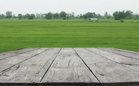 Wood board with meadows green Фото со стока