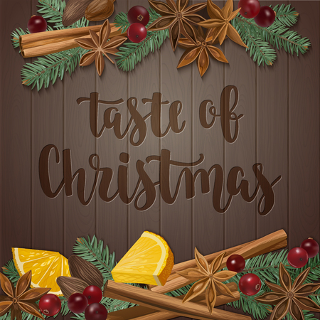 Decorative vector illustration and handwritten brush lettering for your design. Isolated orange, cranberry, cinnamon, star anise, cardamom and nutmeg on wooden background.