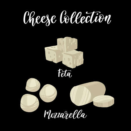 Cheese collection. Different kinds of cheeses. Feta and mozzarella.