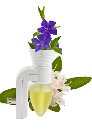 room air: Room air freshener with wild spring time flowers Stock Photo