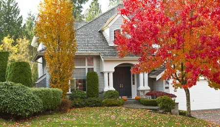 fall season: Shot of urban modern home during fall season  Stock Photo