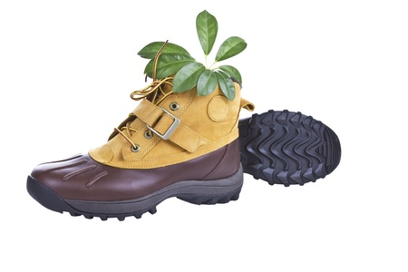 traction: New hiking boots with green plant on white background Stock Photo