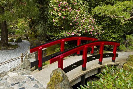 ponte giapponese: Ponte rosso in giardino giapponese