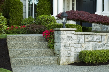appeals: Front steps leading to front yard with red flowers in bloom and maple tree in front of house  Stock Photo