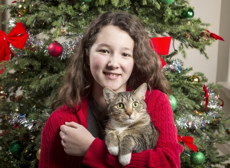 Young girl holding gray hair tabby cat with Christmas tree in background photo