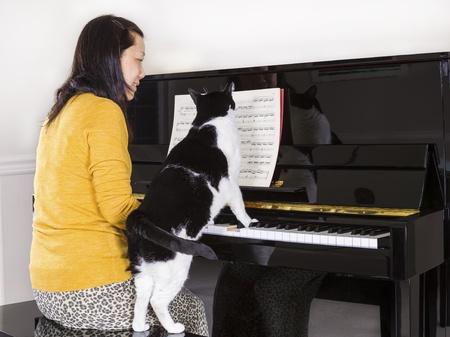 キーボードの彼の足で彼女の家族のペットの猫とピアノを演奏する成熟した女性の写真おいてを奏でています。 写真素材 - 17886180