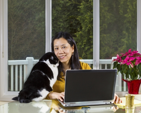 Mature Asian woman and family cat cuddling while working at home with large windows in background  Stock Photo
