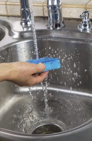 Vertical photo of female hand rinsing soapy sponge with water running out of faucet Stock Photo - 18061065