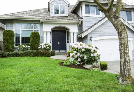 Modern home in North American Suburbs with plush green grass, rhododendron and tulips flower in mid spring season