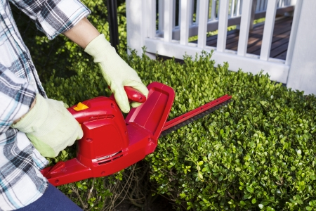 hedge clippers: Horizontal photo of woman and power trimmer cutting the hedges with patio in background