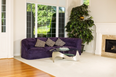Horizontal photo of formal living room with suede leather couch, glass table, carpet, large windows, plant, fireplace and hard wood floors Stock Photo - 21512071