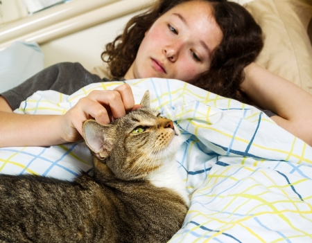 cat sleeping: Photo of family cat and young girl waking up in the morning in bed with both their eyes open