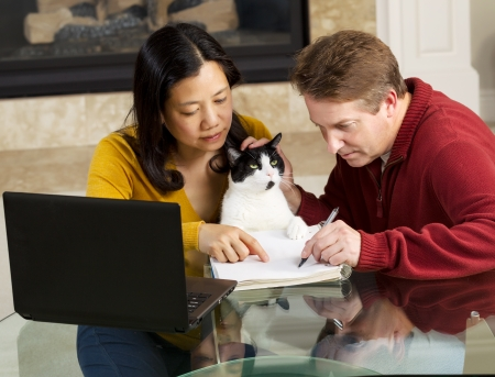 Photo of mature couple, along with family cat, working together at home with fireplace in background   photo