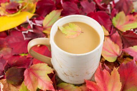 Horizontal photo of fresh coffee, small maple leaf inside, and cream with seasonal autumn leaves surrounding mug  photo