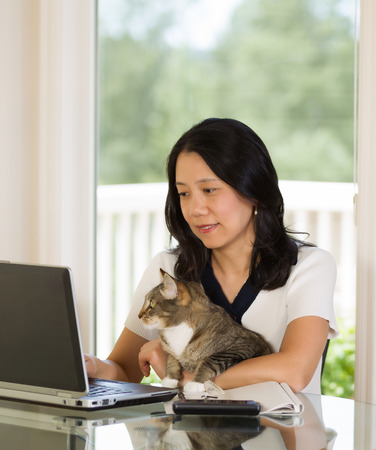 Vertical image of mature woman and her cat both looking at laptop screen while working from home with blurred out daylight coming in from window in background photo