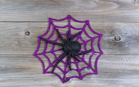 wood spider: Top view of Halloween symbol with large spider and web on rustic wood