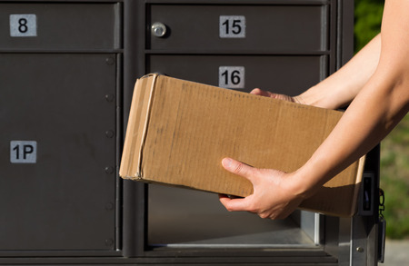 mail order: Closeup horizontal front view of female hands putting package into postal mailbox with green grass and sidewalk in background