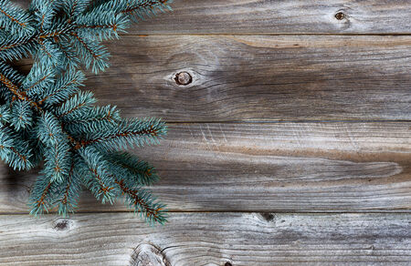 Christmas Tree Branch on Rustic wooden boards