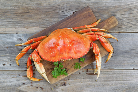 Top view of a steamed Dungeness crab on wooden server board with herbs and spices ready to eat. Imagens