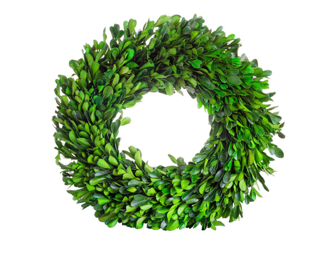 boxwood: Wreath made with real natural green boxwood leaves isolated on white background. Stock Photo