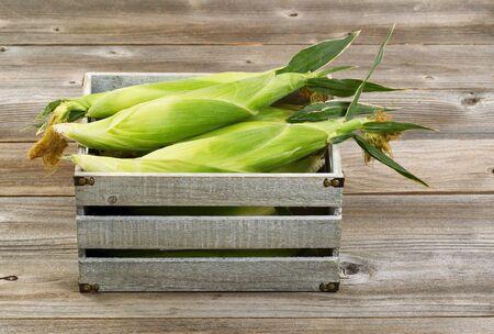 madera rústica: Caja de madera de época llena de maíz recién recogido en el fondo de madera rústica.