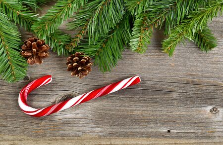 candy border: Christmas border with pine tree branches, cones and a single large candy cane on rustic wooden boards. Stock Photo