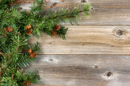 aged wood: Christmas border with rough evergreen fir branches and cones on rustic wooden boards. Layout in horizontal format. Stock Photo
