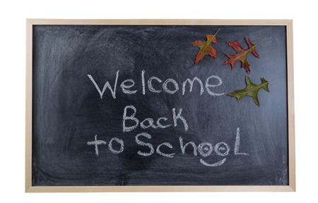 Chalkboard with text stating welcome back to school with autumn leaves. Isolated on white background. Stock Photo