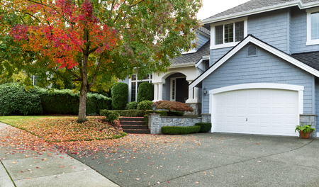 single tree: Front view of modern residential home during early autumn season in Northwest of United States. Maple trees beginning to change leaf colors.