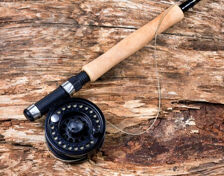 coger: Carrete de la pesca con mosca con el árbol resistido seco. disposición horizontal.