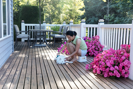 Mature woman grooming her pet dog while outdoors on home deck during summer morning