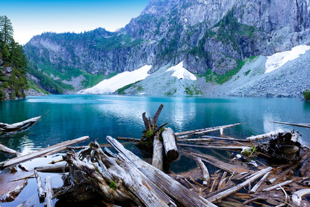 Log pile on glacier lake with mountains and snow during summer season