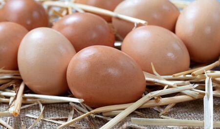 Raw organic brown farm eggs on straw background