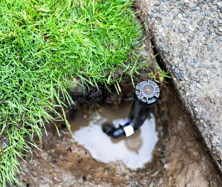 Sprinkler system repaired with new valve ready for water use