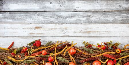 Thanksgiving decorations on bottom of white rustic wood 版權商用圖片