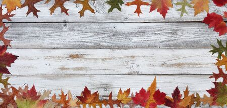 Autumn decorations made of leaves in rectangle border on white rustic wood for Thanksgiving or Halloween season