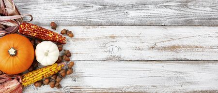 Autumn decorations of pumpkin, gourd, corn and acorns on white rustic wooden boards for Halloween or Thanksgiving holiday concept