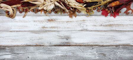 Halloween or Thanksgiving Autumn holiday concept with corn, leaves and acorns on top border of white wooden background