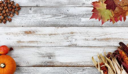 Halloween or Thanksgiving Autumn holiday concept with corn, leaves, pumpkin and acorns in each corner of white rustic wooden background 版權商用圖片