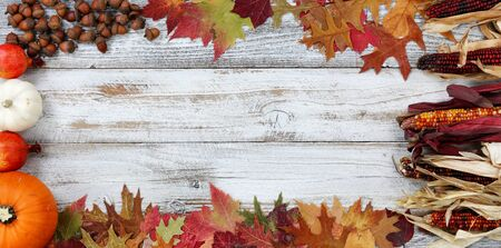Halloween or Thanksgiving Autumn holiday concept with corn, leaves, pumpkin and acorns in complete border on white rustic wooden background 版權商用圖片