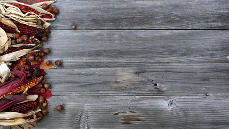 Leaves, corn and acorns on left border of weathered wood for the Thanksgiving Autumn holiday season 版權商用圖片