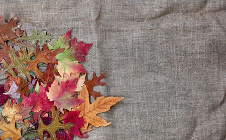 Pile of Autumn leaves on burlap cloth