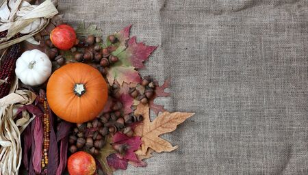 Thanksgiving Pumpkin with acorns and corn on burlap cloth