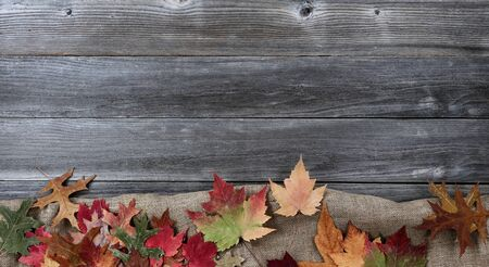 Autumn leaves with burlap cloth forming bottom border on weathered wood