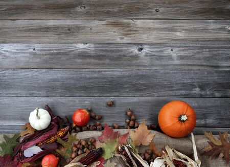 Thanksgiving Pumpkin with acorns and corn on burlap cloth forming border on weathered wood