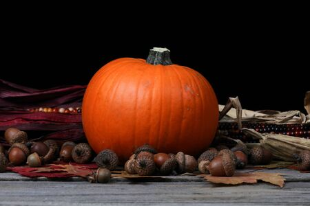 Pumpkin for Thanksgiving or Halloween holiday with dark background 版權商用圖片
