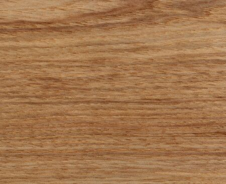 American Hickory wood texture background in filled frame format