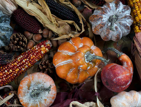 Seasonal autumn decorations consisting of pumpkins, gourds, and corn for Thanksgiving or Halloween holiday concept Banco de Imagens