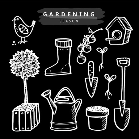 Set of chalk gardening doodle sketches, isolated vector objects on blackboard Vector