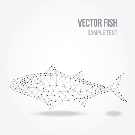 outline drawing of fish: Polygonal silhouette of tuna fish, modern mesh lowpoly design, vector illustration